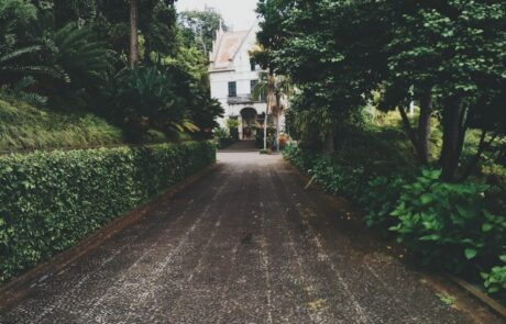 concrete path leading to house surrounded by trees