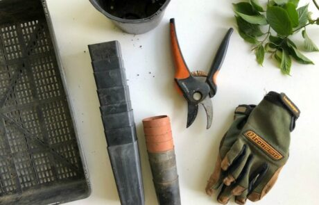 gardening tools laid on counter including gloves, shears, pots and trimmings