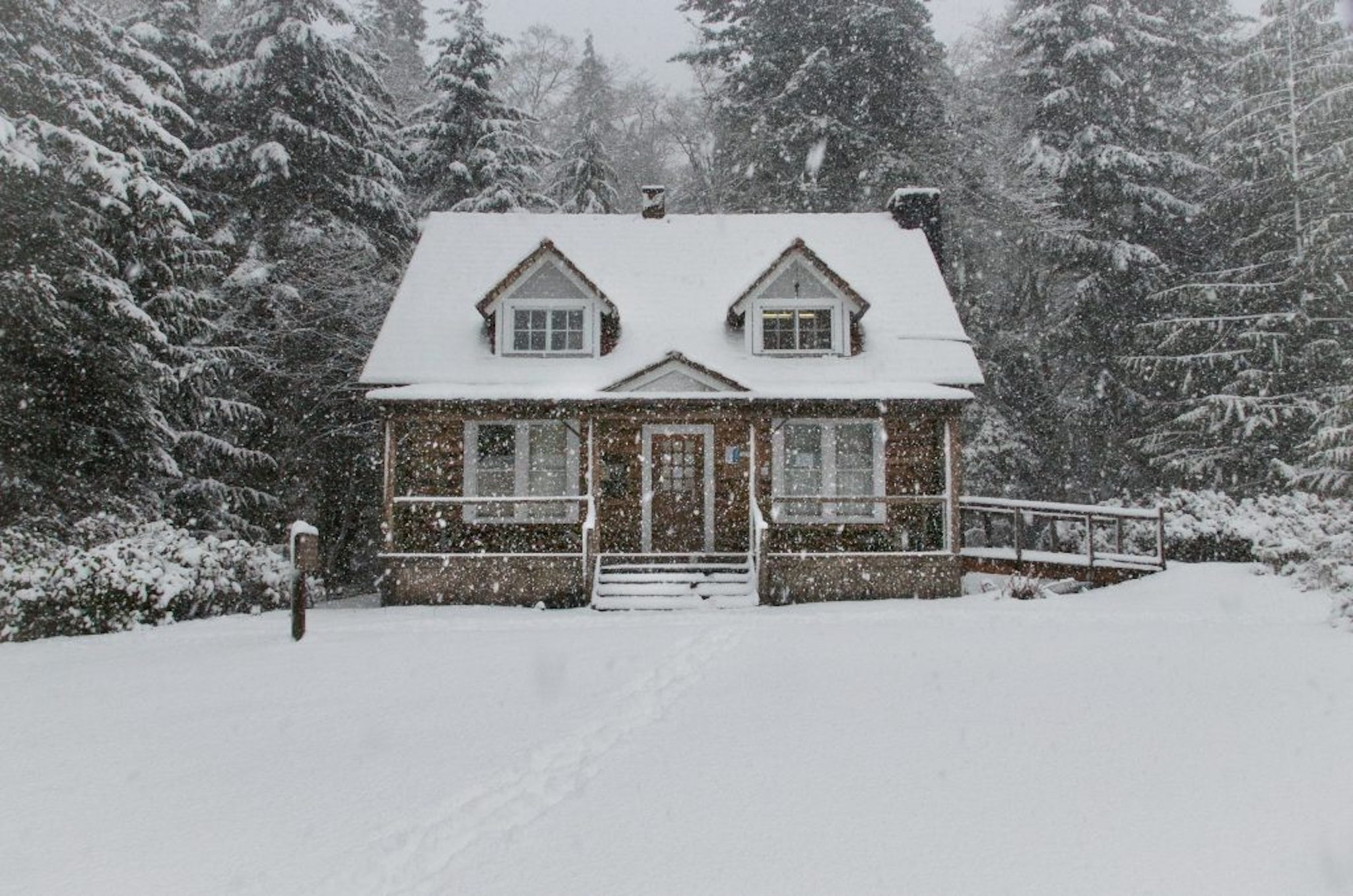 Snowy Home In The Woods