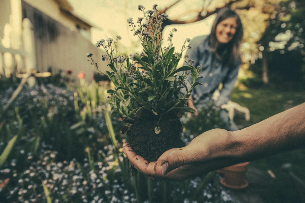 close up on man holding plant with woman smiling in the background