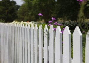 white picket fence with purple flowers