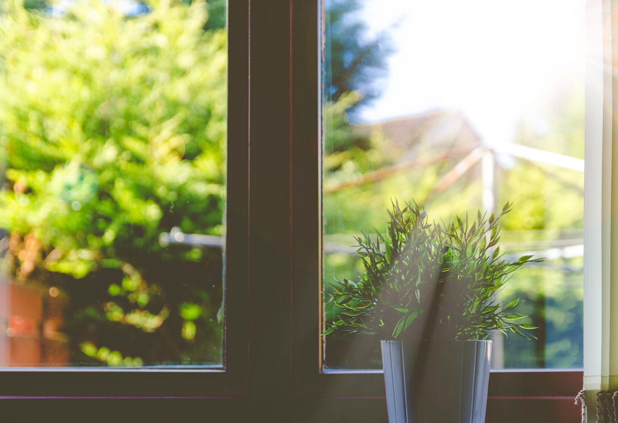 Clean Home Window With Sun Shining Through