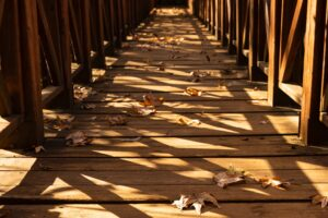 deck needs to be cleared of leaves and debris
